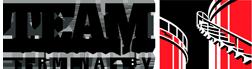 logo TEAM Terminal